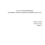 Отчет по ознакомительной практике по экономике предприятия