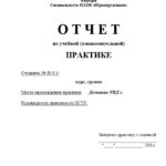 Отчет по ознакомительной практике по юриспруденции