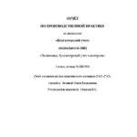 Отчет по производственной практике по бухгалтерскому учету