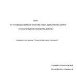 Отчет по производственной практике по сварке и резке