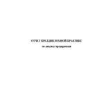 Отчет по преддипломной практике по анализу предприятия