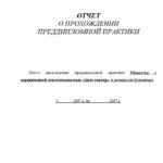 Отчет по преддипломной практике по бухучету