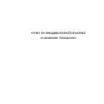 Отчет по преддипломной практике по менеджменту