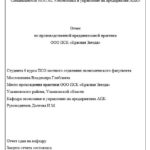 Отчет по преддипломной практике по управлению предприятием