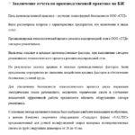 Заключение отчета по производственной практике по БЖ